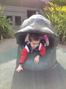 Nicholas likes crawling through a sea turtle's shell.
